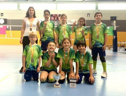 L'equip de vòlei benjamí de l'escola: subcampió de Catalunya!