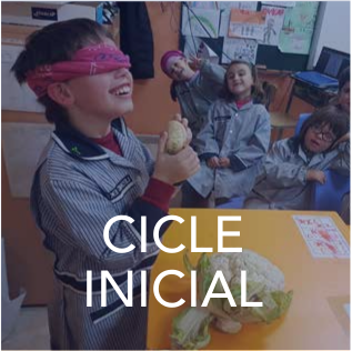 Bloc Cicle Inicial